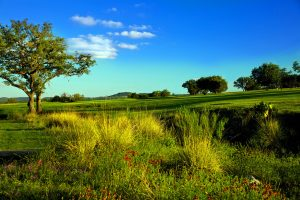 Buckhorn-Fairway-III.jpg